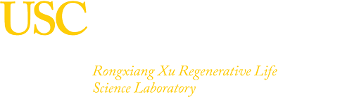The Rongxiang Xu Regenerative Life Science Lab